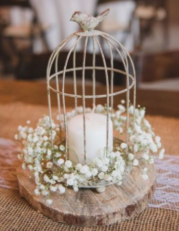 wedding centerpieces at the butterfly pavilion birdcage